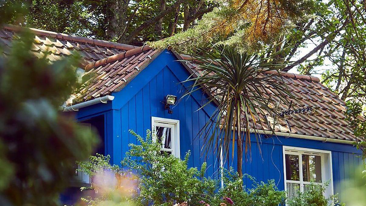Alojamientos turísticos: el nuevo hogar de las plagas